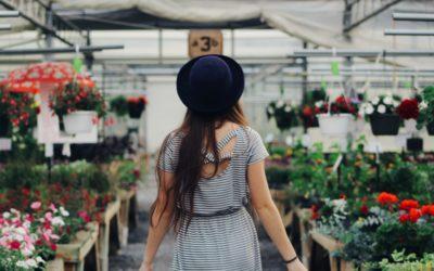 Hledáme prodavačku – aranžérku květin