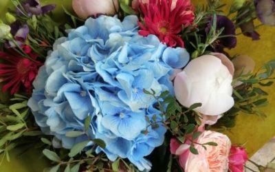 Nádherné květiny